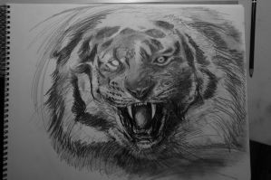 TIGRE .WIP. by TheRealDarkRevan