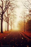 Hazy autumn by EliseEnchanted