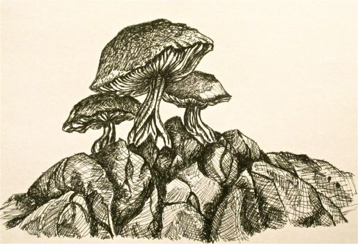 Mushrooms: Ink by Trista-Willows