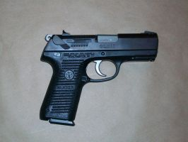 Stock Ruger P95- 1 by TheBitterBullet