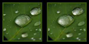 water drops 2 stereoscopic by pwg