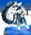 Hot Springs in Winter by CocoFoxStudios