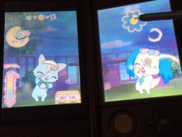 Jewelpet ds rom :3 by alucardserasfangirl