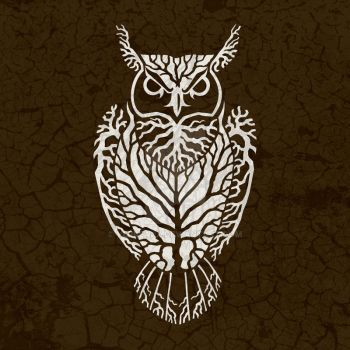 Roots Owl by verreaux