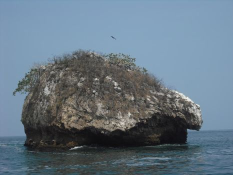 Turtle Rock by Thawrom