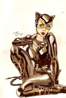 comic-cat-woman-brubaker by Elliste