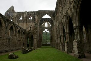 Tintern Abbey 03 Stock by lokinststock
