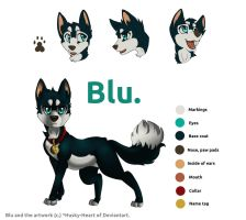 Blu- Official Reference Sheet by Husky-Heart