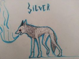 Silver by WolvesHowl457