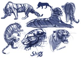 Snow sketches by tigon