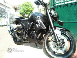 Yamaha Fz 16 Monster by RikleApaadanya