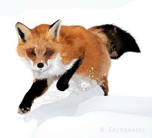 Winter Fox (digital drawing) by eyeqandy