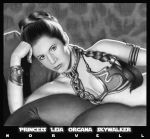 Carrie Fisher as Princess Leia by DaleNorvell