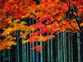 Autumn Trees  by DonsDigitalCreations