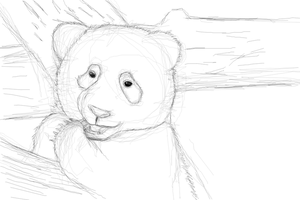 baby panda sketch by selftaughtartist1