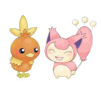 Team skitty and torchic by Popomo