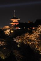 In kyoto spring-12 by Bros-Chu