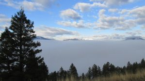 Wall of fog by lucium55