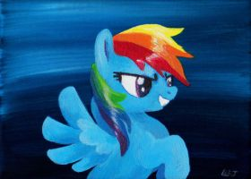 RainbowDash in Acrylic by lizspit