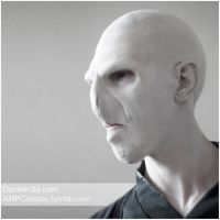 Voldermort by moshunman