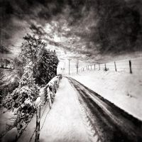 Cold melancholia 14 by slygarde
