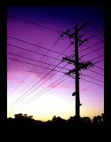 Sunset Powerlines by kayne