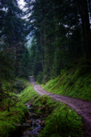 The way. by CelticCari