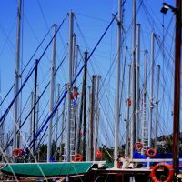 Forest of Masts by caglayancaliskan