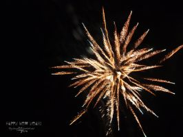 Happy New Year - 2012 by zuza7595
