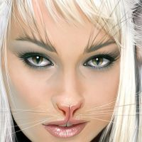 Neko close up 3 by fantasio