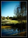 Under The Willow Tree by mzteeriouz