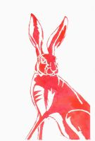 Red Hare by SuicideNeil