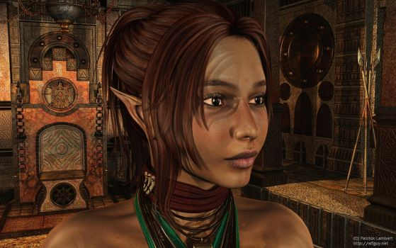 Portrait of an elf by Dendory