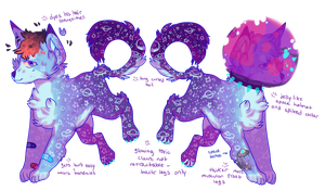 star/space dog AUCTION open by wqlf