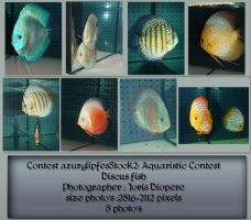 Contest fish pack 2 by AzurylipfesStock