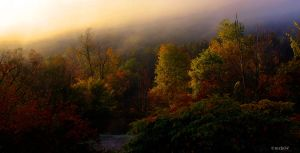 Early Fall in Allegany by mrb24