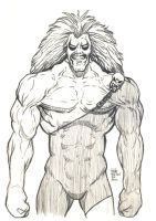 Daily Sketches Lobo by fedde