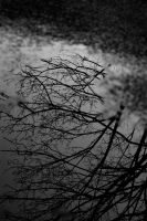 Puddle by darkmonkey78