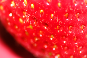 Close Up of Strawberry by Suzums707