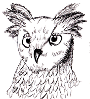 Owl with Pen and Ink by Zeela-Winters