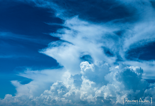 The animal spirit of the clouds! by Ramses-Anael