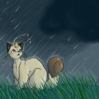 Pkmn: Whats with this storm? by tamingofthesandshrew