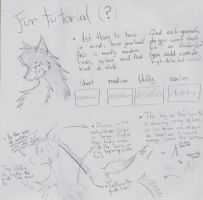 Fur Tutorial (?) I would say tips :P by Dragon-Wish