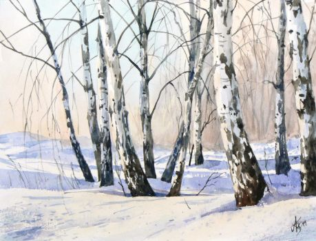 The birch-trees in winter by mashami