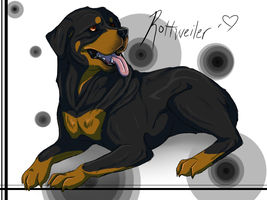 Rottweiler by AeroSocks