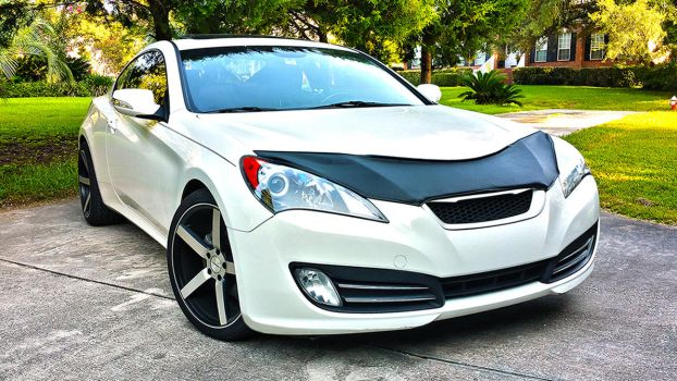 Genesis Coupe by deathonabun
