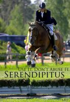 Show Jumper 3 by Serendipitus