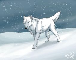 Alone in winter by Tanchie97