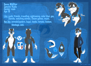 OC Reference WildStar The Husky 2015 by Wolf-Lisa