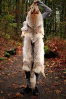 Gray Wolf Skin Headdress: Full by NaturePunk
